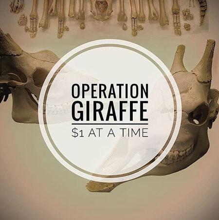 Voodooschaaf Blog Blog Archive Operation Giraffe Statt Gluehwein